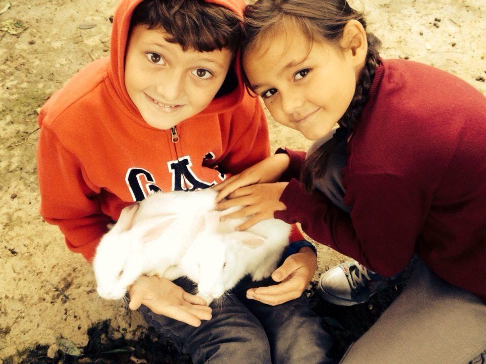 Crianças com Coelho -Sustentabilidade em Hotel Bangalôs da Serra #CurtaSuaFamilia #HotelSustentavel #TurismoVerde #TravelersChoice #EcoLider #Gramado