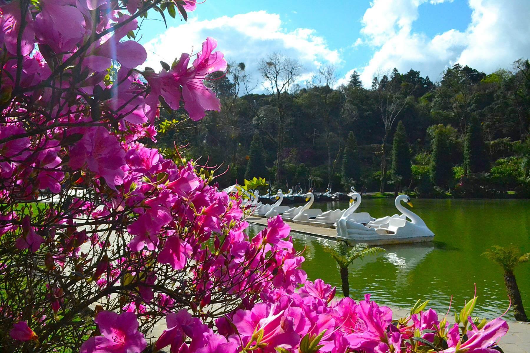 Lago Negro - Gramado #CurtaSuaFamilia #HotelSustentavel #TurismoVerde #TravelersChoice #EcoLider #Gramado