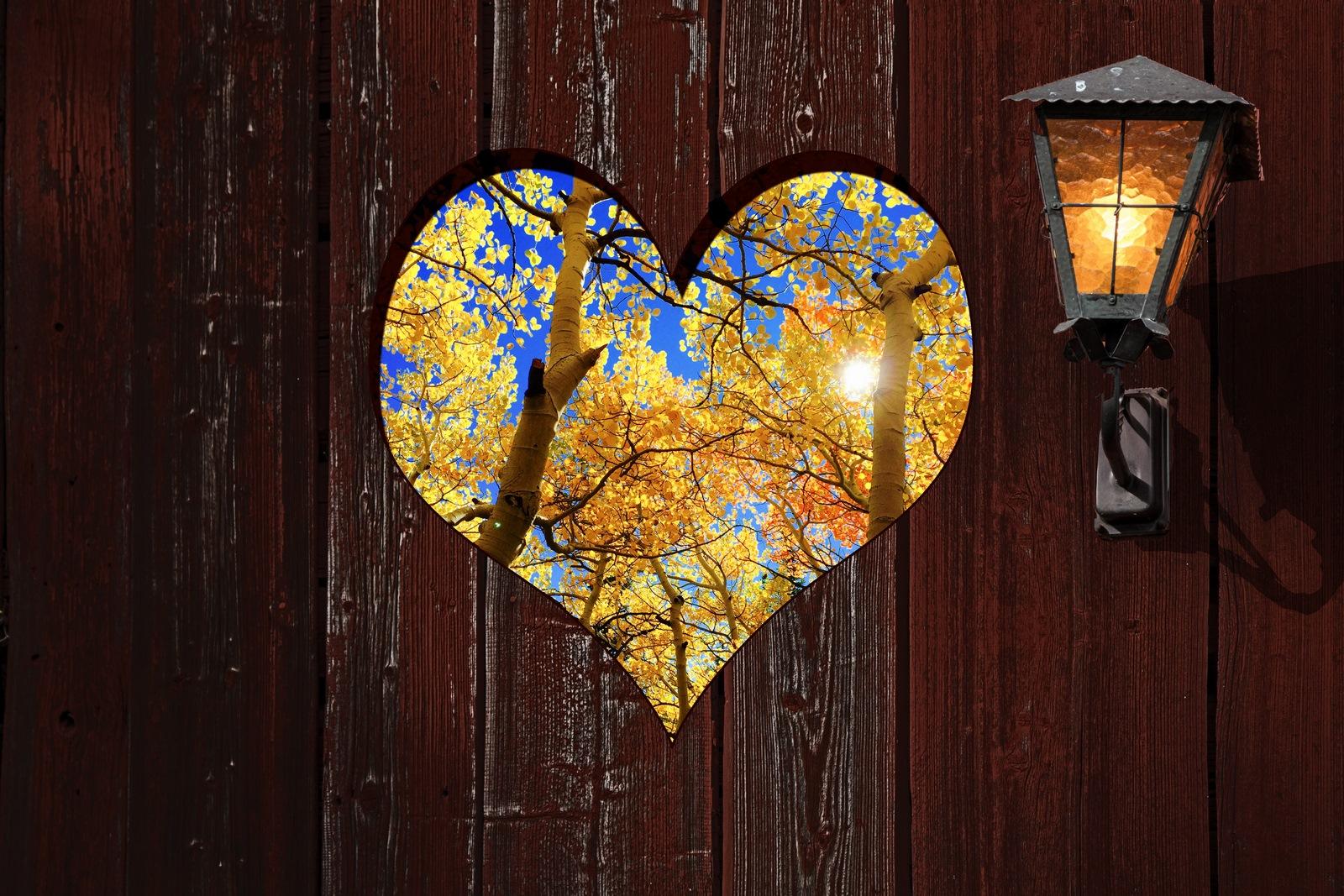 Namorados e Outono