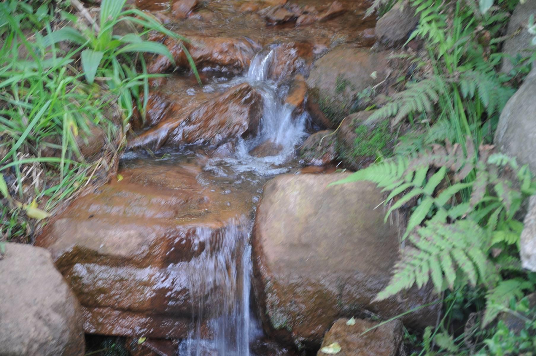 Agua - Jardim Zen