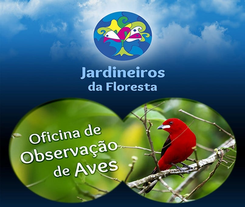 Observacao de Aves e Cultivando (6)