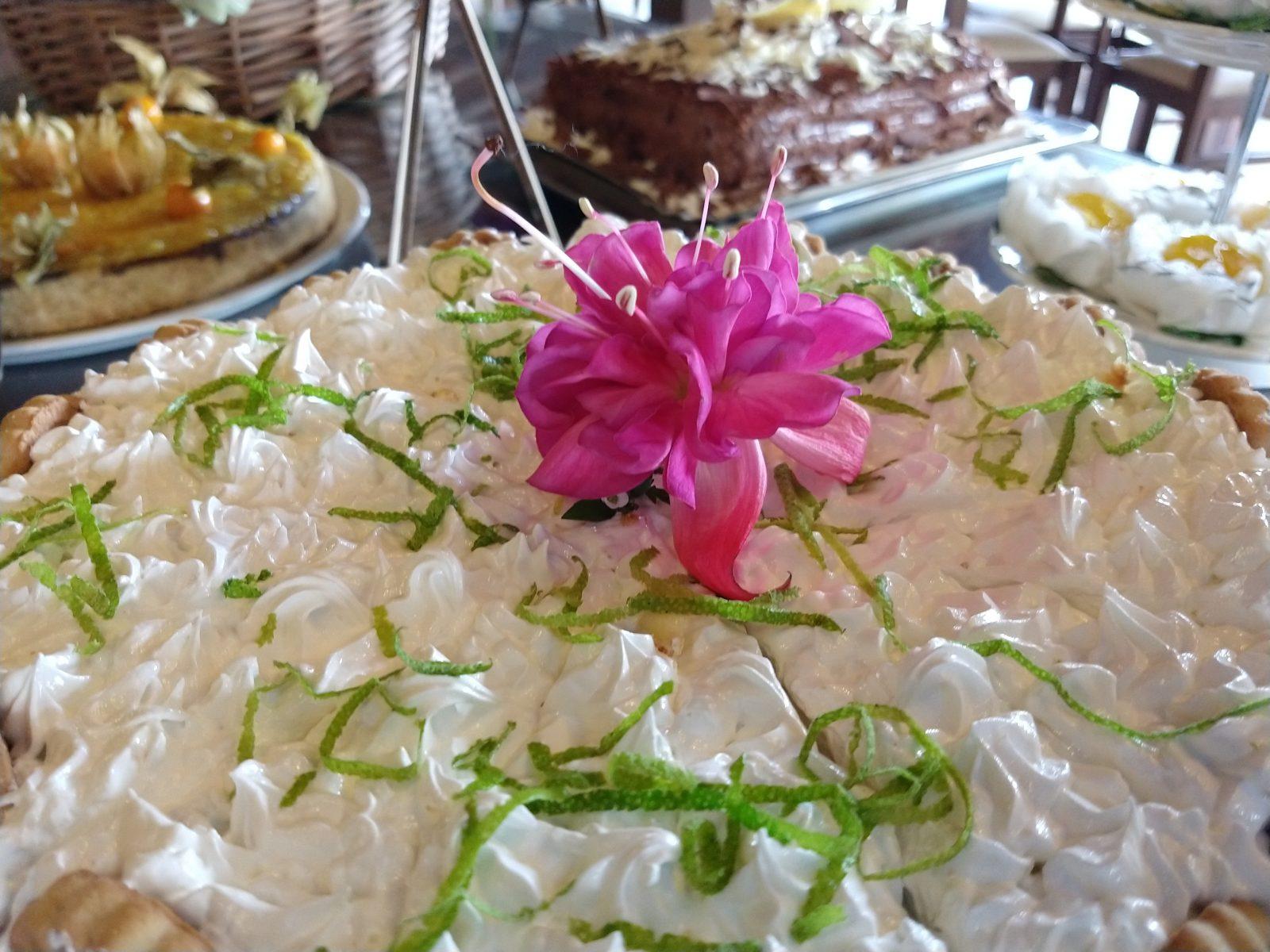 Cha da Tarde - O Hotel Bangalôs da Serra, comprometido com sua filosofia de sustentabilidade em prol da comunidade local, organizou um chá da tarde beneficente a fim de arrecadar fundos para o Lar de Idosos Maria de Nazaré, de Gramado.