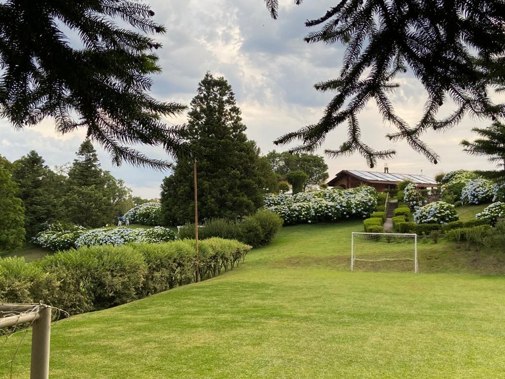 Campo de Futebol - Hortênsias